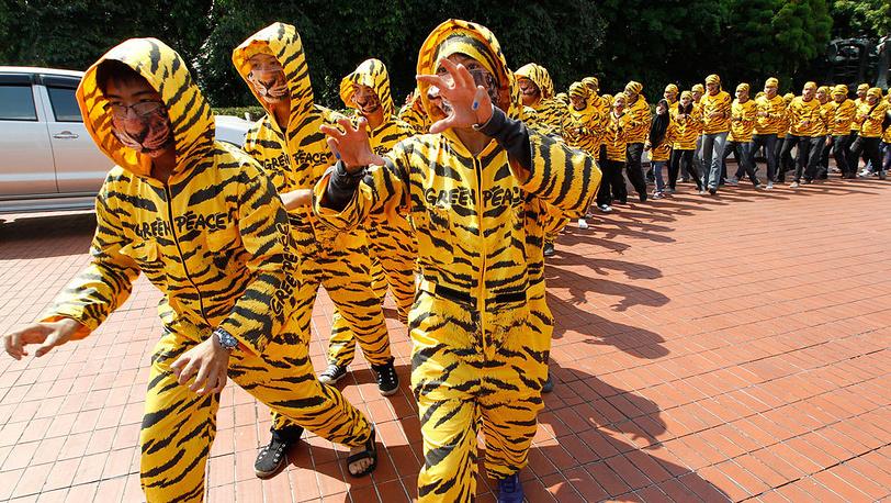 Флеш-моб в костюмах тигров, Джакарта. 2012. Фото EPA/MAST IRHAM