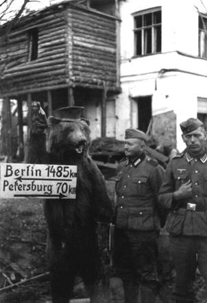 Немецкие солдаты возле чучела медведя с указателем на Ленинград и Берлин.