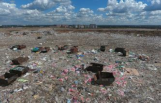"""Полигон бытовых отходов """"Кучино"""", закрытый по требованию президента, 23 июня 2017 года"""