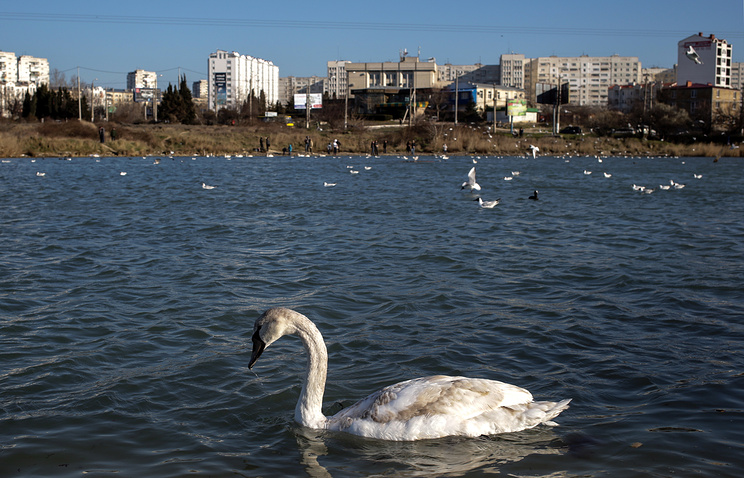 A view of Crimea's Sevastopol