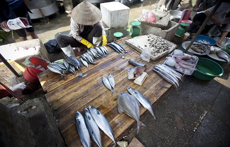 Рыбный рынок в Ханое
