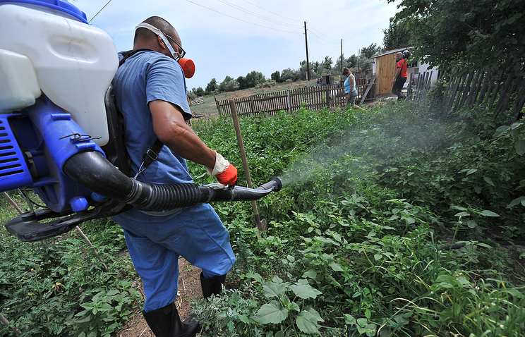 Обработка приусадебного участка химикатами для борьбы с саранчой