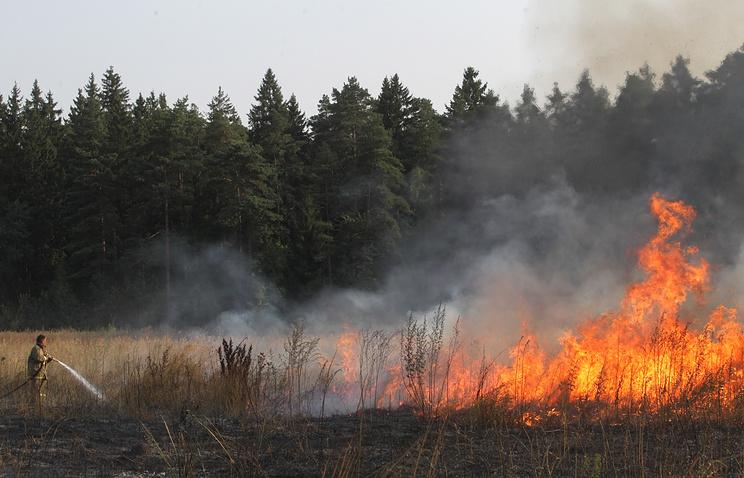 Лесные пожары в Подмоковье 2010 года.