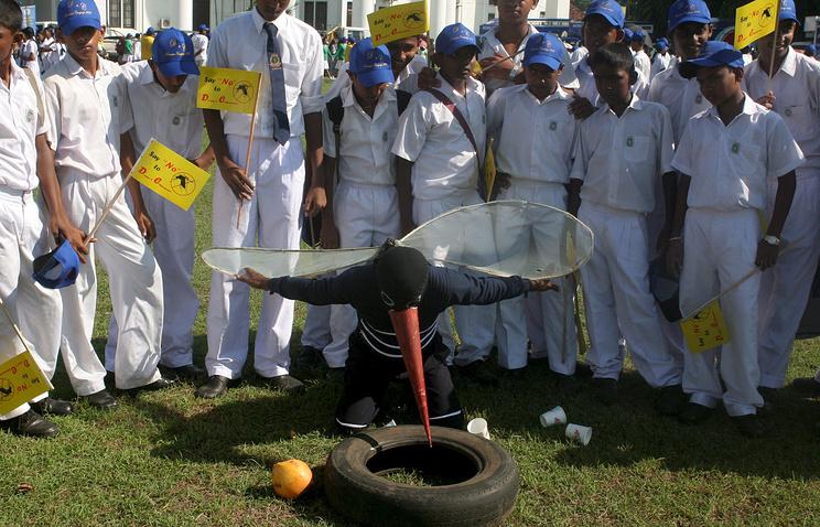 Информационно-просветительская кампания по искоренению вирусов лихорадки денге и чикунгунья в Шри-Ланке
