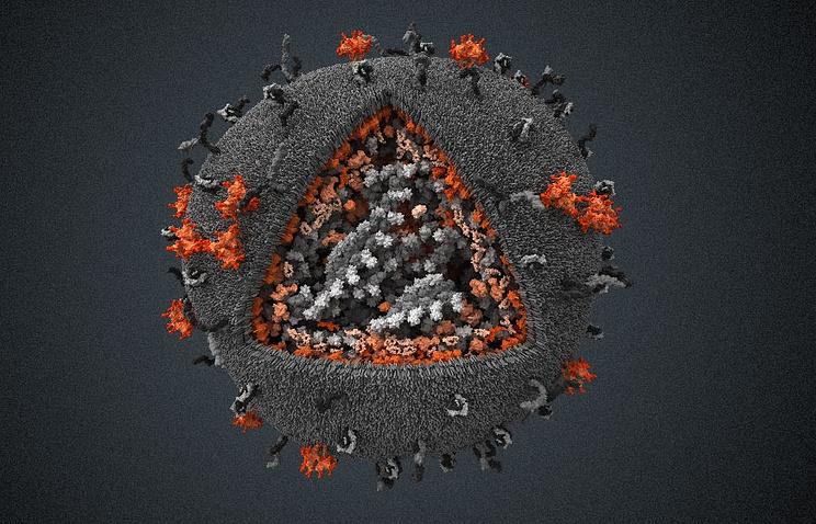 Визуализация вируса иммунодефицита человека, созданная компанией Visual Science