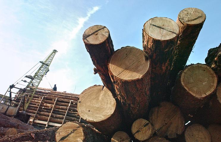 Погрузка древесины для отправки в Китай