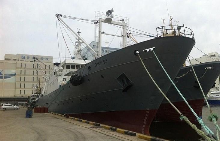 Орион 501