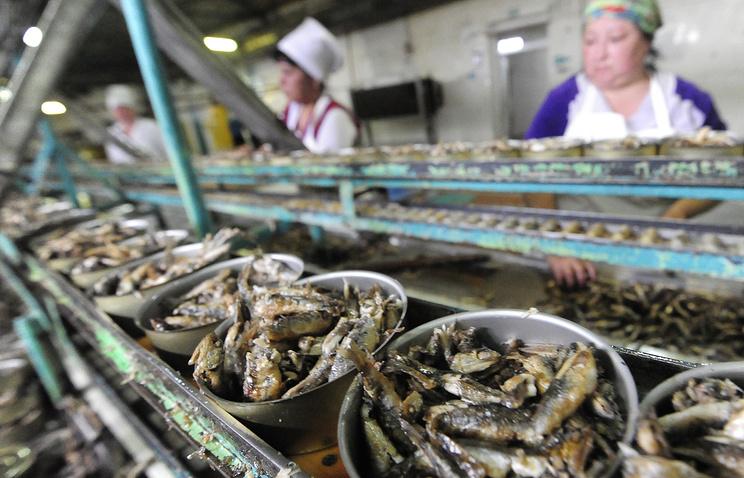 Производство рыбных консервов