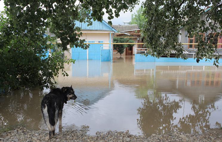Последствия наводнения в Крымске, 8  июля 2012 года