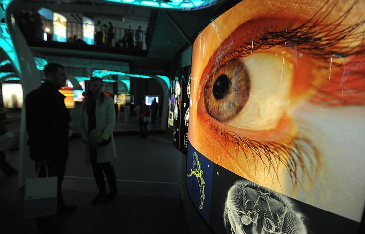 """На мультимедийной выставке """"Научный туннель Макса Планка"""" в центре дизайна Artplay, 2013 год"""