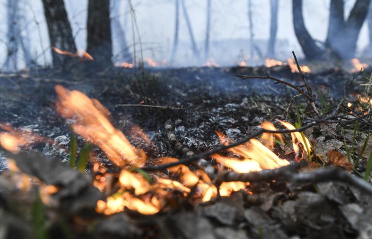 Особый противопожарный режим введен в15 областях Сибири иДальнего Востока