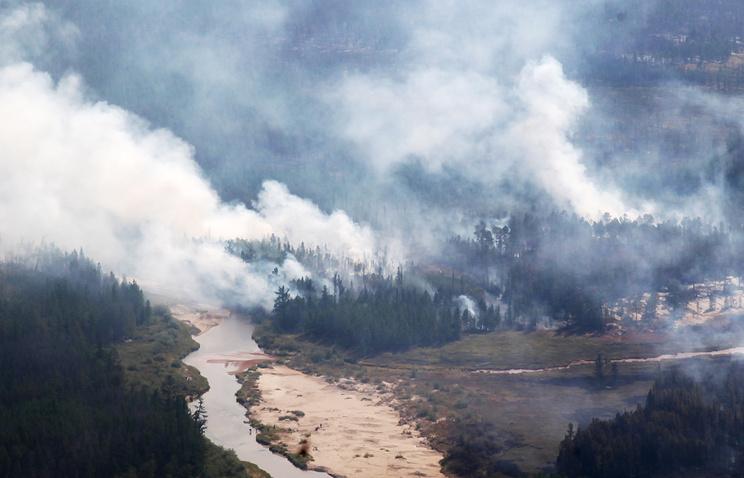 На далеком Востоке засутки выгорело неменее 200 тыс. гектаров леса