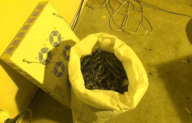 Уекатеринбуржца изъяли несколько мешков конопли весом неменее 25кг