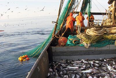 Рыбаки Приморья. Фото ИТАР-ТАСС