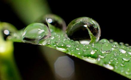Фото EPA/PETER STEFFEN/ИТАР-ТАСС