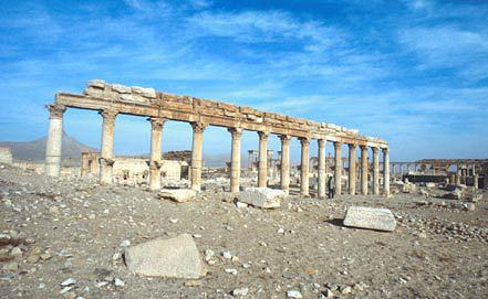 Развалины Пальмиры. Фото ИТАР-ТАСС