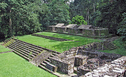 Фото www.wmf.org