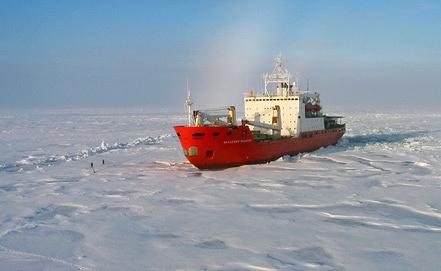 Фото из архива ИТАР-ТАСС/ НИИ Арктики и Антарктики